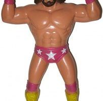 Wrestling Action Figure